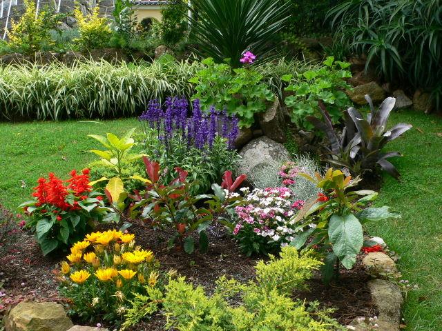 Fotos de nuestras plantas compa eras de nuestras queridas - Suelos para jardines pequenos ...