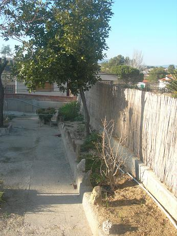 Qu poner en jardinera de 10 metros de largo for Que plantas poner en una jardinera