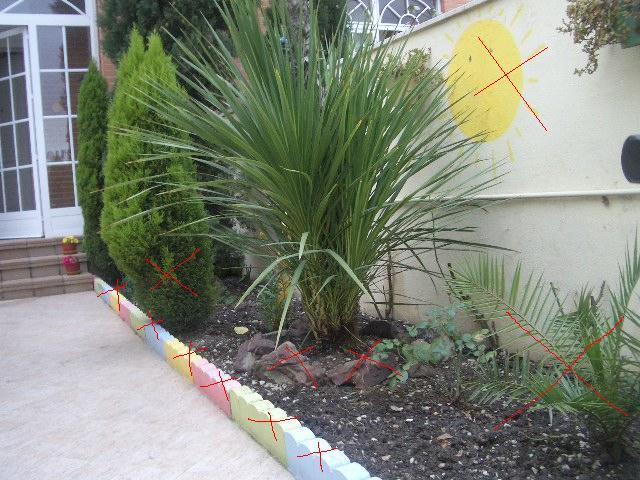 Ayuda para arreglar el jard n p gina 2 for Arreglar el jardin