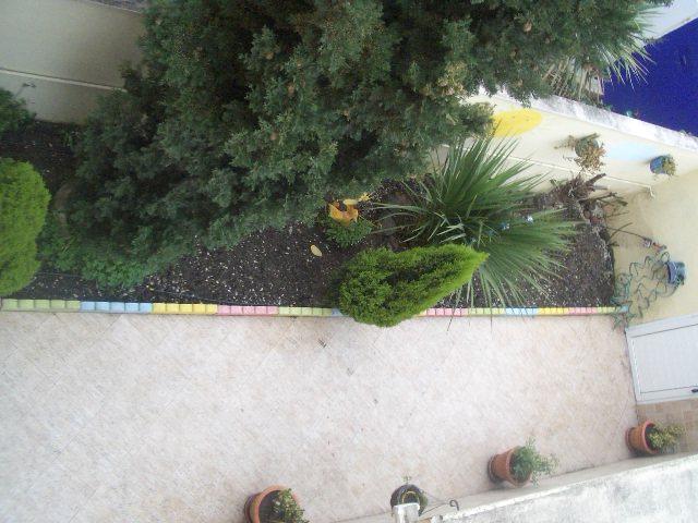 Ayuda para arreglar el jard n for Arreglar el jardin