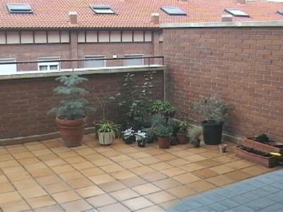 Ayuda para dise ar mi terraza jard n en valladolid fotos - Disenar mi jardin ...
