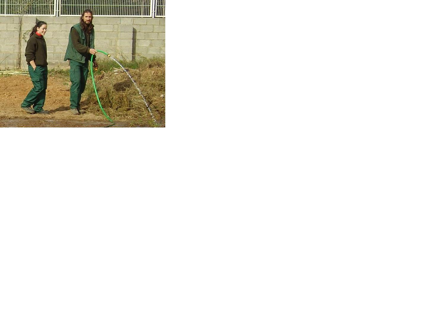 Ofrecemos bolsa candidatos como ayudantes de jardiner a for Jardineria barcelona