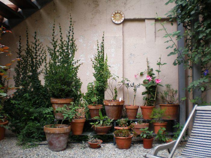 Fotograf as de mi terraza un poco vuestra p gina 4 - Estantes para macetas ...