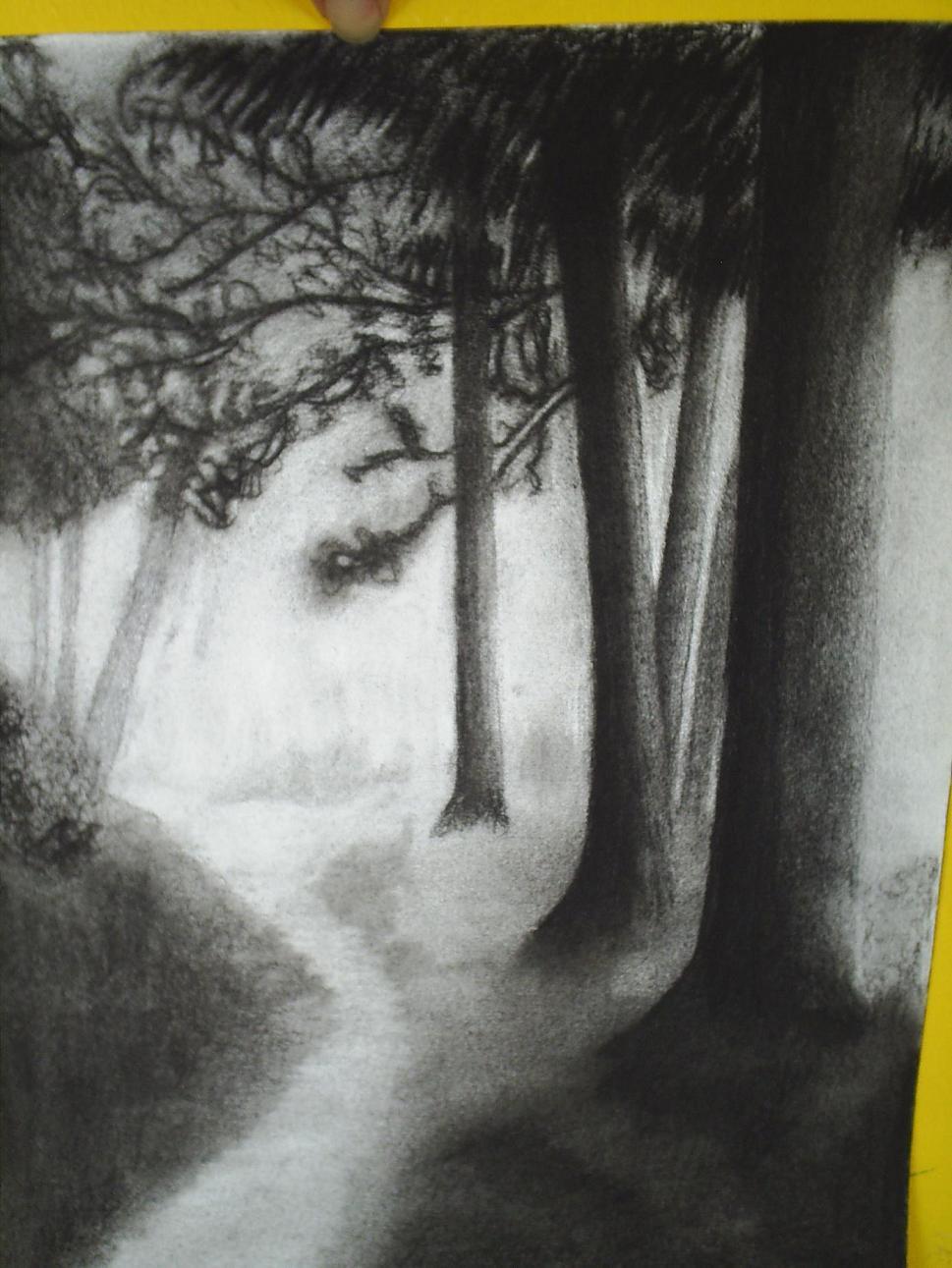 dibujos hechos con carboncillo - Taringa!
