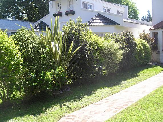 Setos con arbustos de flores y combinaciones fotos de for Setos para jardin